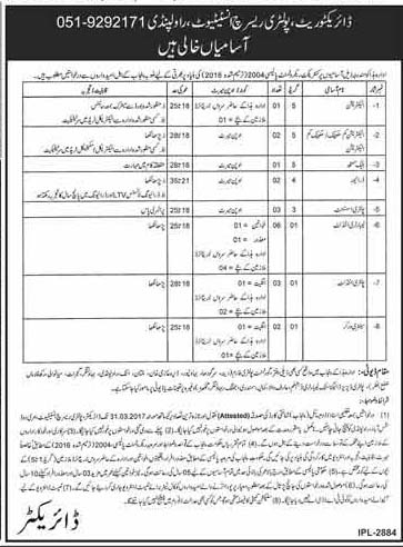 Jobs in poultry research institute Rawalpindi