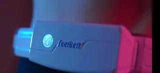 feelbelt