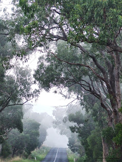 From the thick of fog into the scorching heat