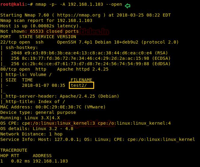 Hack The Gemini Inc (CTF Challenge)