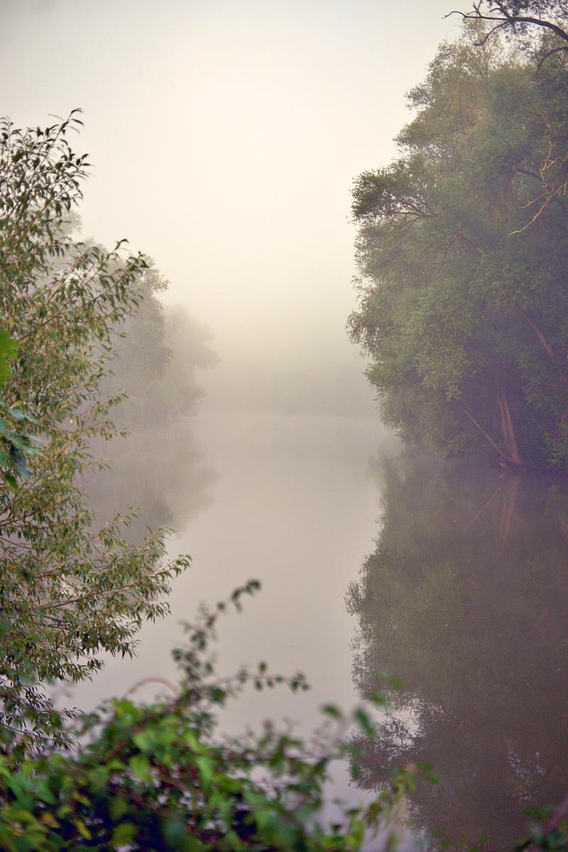 Spaziergang im Morgennebel (1)