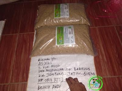 Benih Padi TRISAKTI Pesanan   AS'ARI, Jombang, Jatim.  (Sebelum di Packing)