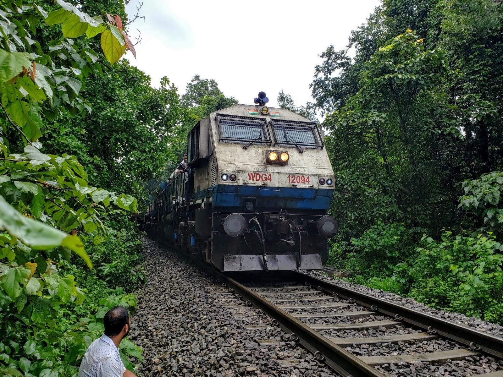 Freight train crossing on the Dudhsagar track