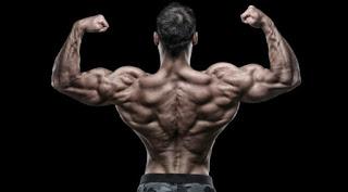 kreatin,suplementi prodaja,misicna masa,whey protein, najbolji suplementi za misicnu masu, proteini za pocetnike, mrsavljenje, amino kiseline, bcaa, sagorevaci masti, suplement store, creatin, najbolji suplementi za snagu, definicija, povecanje telesne tezine