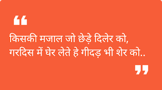 Dil Ka Raja Attitude Status Hindi