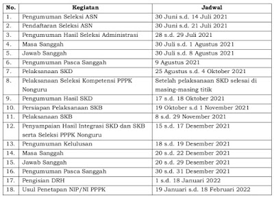 Resmi Rilis! Berikut Update Jadwal Seleksi CPNS dan PPPK 2021