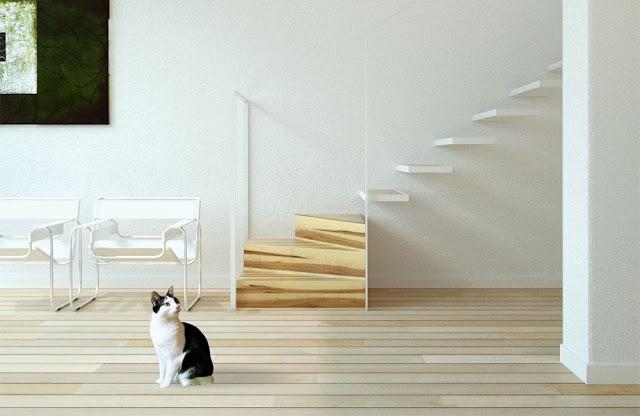 steps design