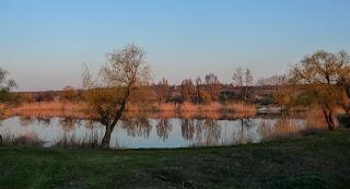 Мирноград. Донецька обл. Ставок на річці Сінній в балці Сінній