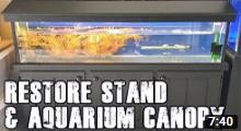 How To Restore Aquarium Cabinet and Canopy