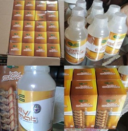 Agen QnC Jelly Gamat Di Riau Pekanbaru
