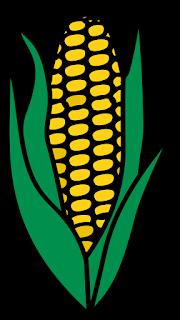 corn clipart png