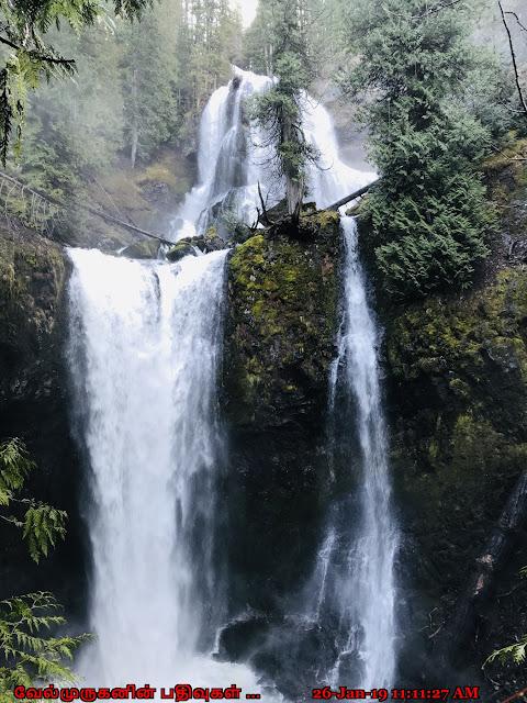 Washington Falls Creek Falls