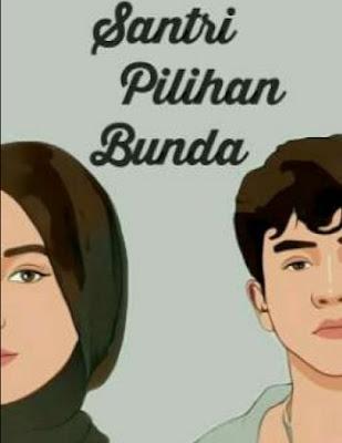 Novel Santri Pilihan Bunda Full Episode