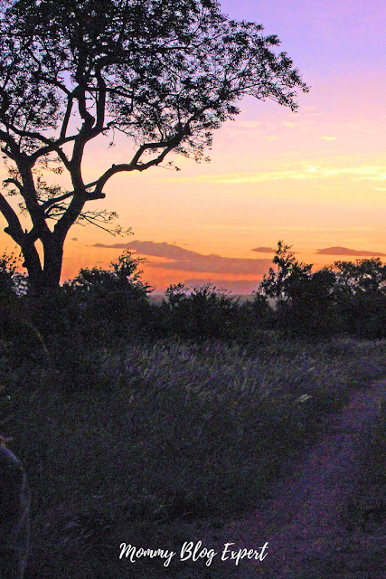 South Africa Sunset Krueger National Park