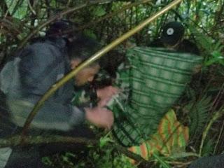 Dua orang Tenaga Medis, Yang Hilang Pasca Penyerangan KKB Di Distrik kiwirok Berhasil Di Temukan