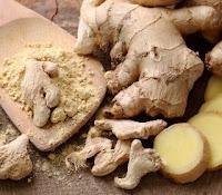 ginger info