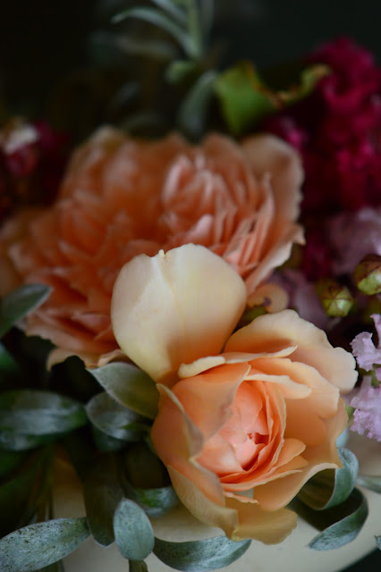 rose Crown Princess Margareta, monday vase meme, small sunny garden, amy myers photography