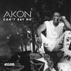 Can't Say No - Akon