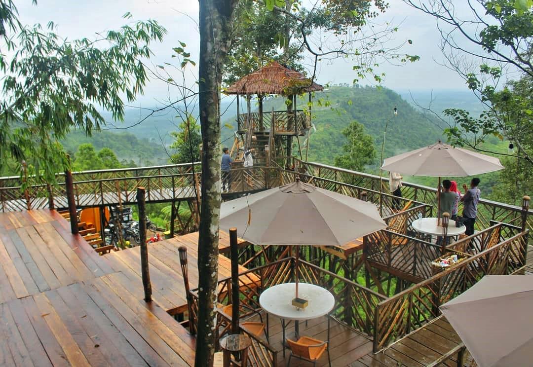 Rumah Pohon Habitat