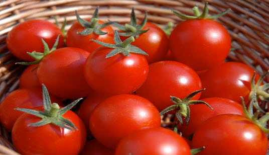 Tomato is the most common ingredient used in our food