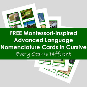 FREE Montessori-inspired Advanced Language Nomenclature Cards in Cursive