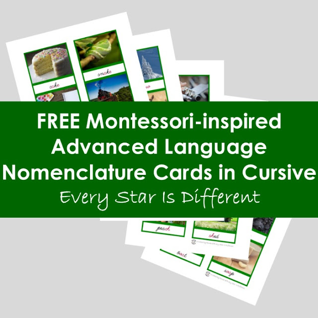 FREE Montessori-inspired Advanced Language Nomenclature Cards in Cursive