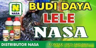 AGEN NASA DI Bermani Ulu Rejang Lebong - TELF 082334020868