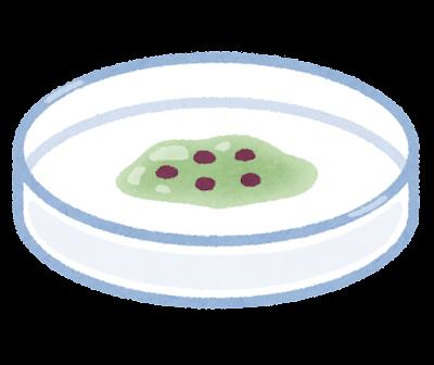 細胞の培養のイラスト