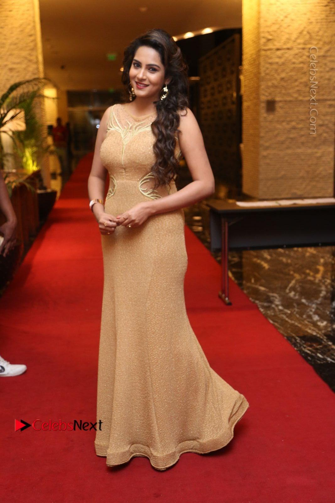 Himaja Stills in Golden Spicy Long Dress at SIIMA Short Film Awards 2017