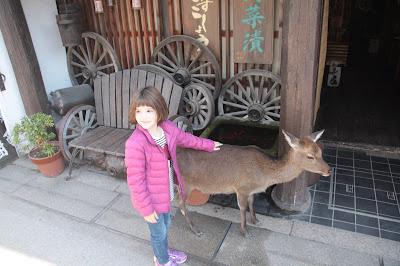 Paula acariciando un ciervo