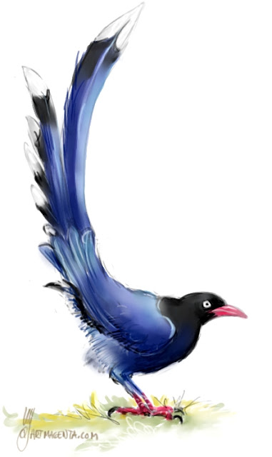 Taiwan blue magpie drawn by Artmagenta