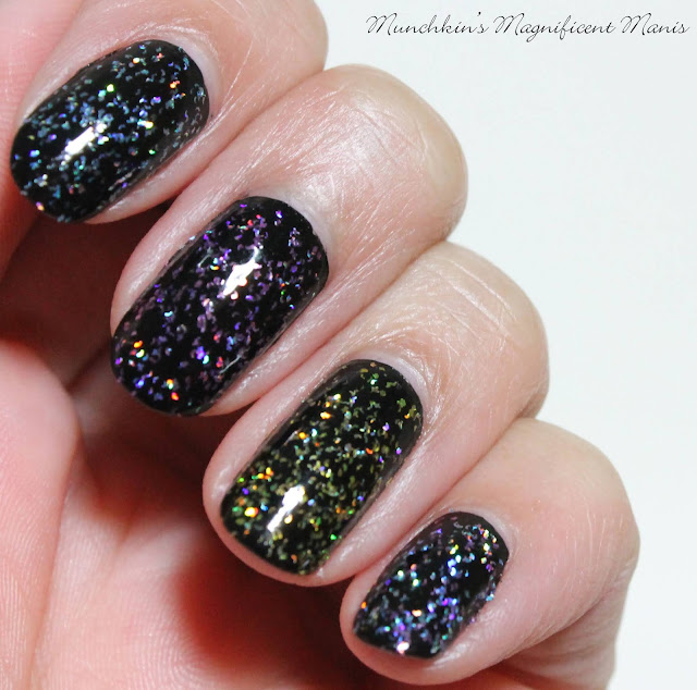 Holo Taco 1st Anniversary Collection