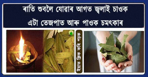 আচৰিত ! তেজপাত জ্বলোৱাৰ লাভালাভ জানি হব হতভম্ব | Most widely known benefits of bay leaves