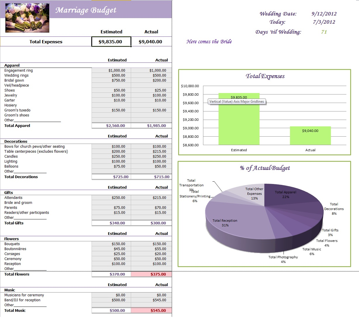 Marriage Budget Planner Template Sample