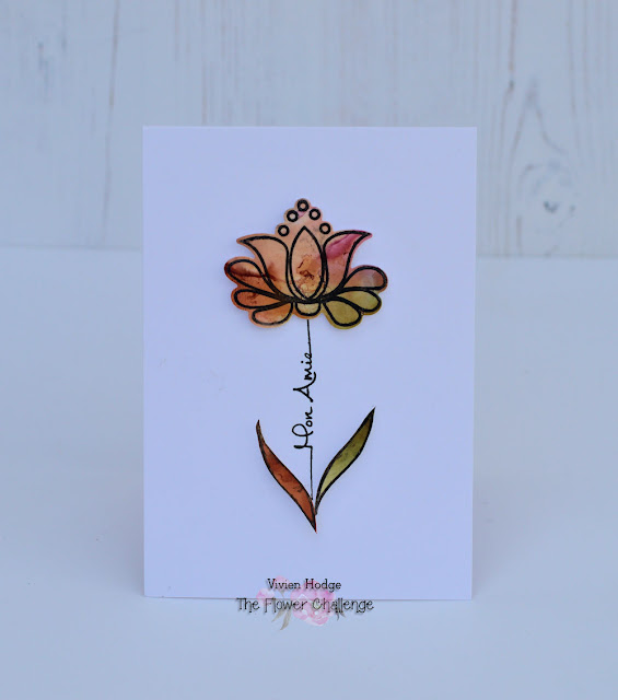 #37 CAS card