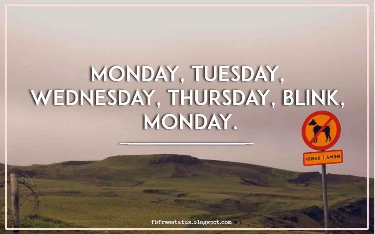 Monday, Tuesday, Wednesday, Thursday, blink, Monday.