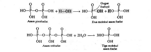 Kimia100.com