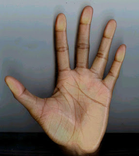 Two Vertical Lines On Mount Of Mercury | Palmistry
