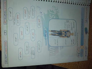 حلول الدرس الأول في مادة العلوم للصف التاسع