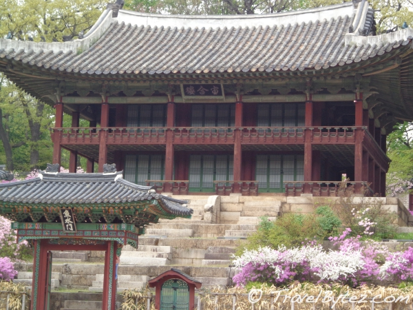 Changdeokgung Palace's Secret Garden (Biwon 비원 / Huwon 후원)