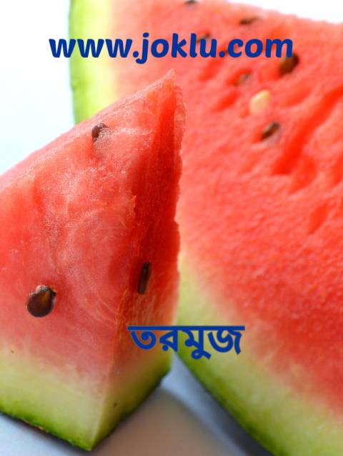 Red vs green Bengali riddle answer