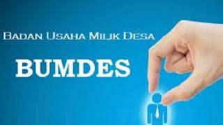 Info Bimtek BUMDes