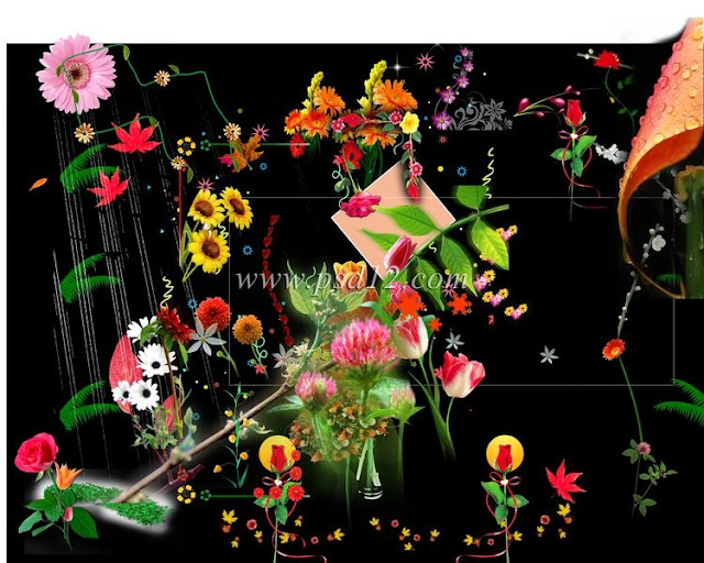 Floral Graphics and Clip Art