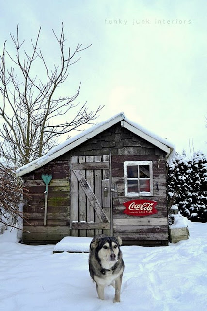Rustic garden shed 4 - the reveal! / winter scene