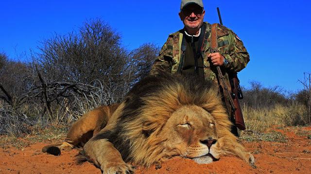 Empresa de safari propone polémica oferta de cazar a una leona gratis si logran matar a un león