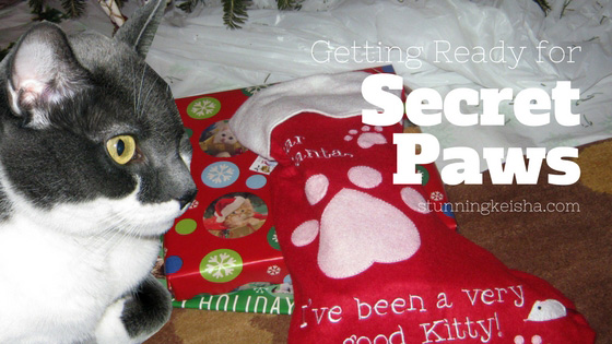 Getting Ready for Secret Paws