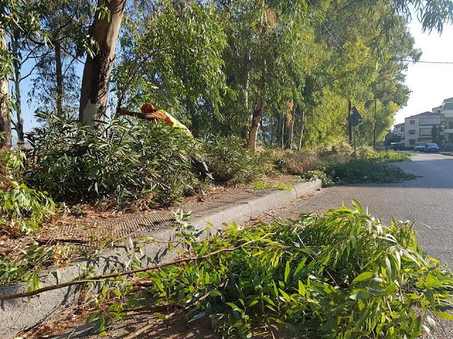 Συνεχίζονται με αμείωτη ένταση οι παρεμβάσεις του τομέα καθαρισμού σε όλο τον Δήμο Ναυπλιέων