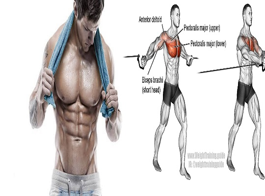 Chest Workout | 6 Exercises To Build The Upper Chest