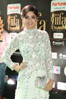 Poonam Kaur in Beautiful Floor Length Gown at IIFA Utsavam Awards 2017  Day 2  Exclusive 21.JPG