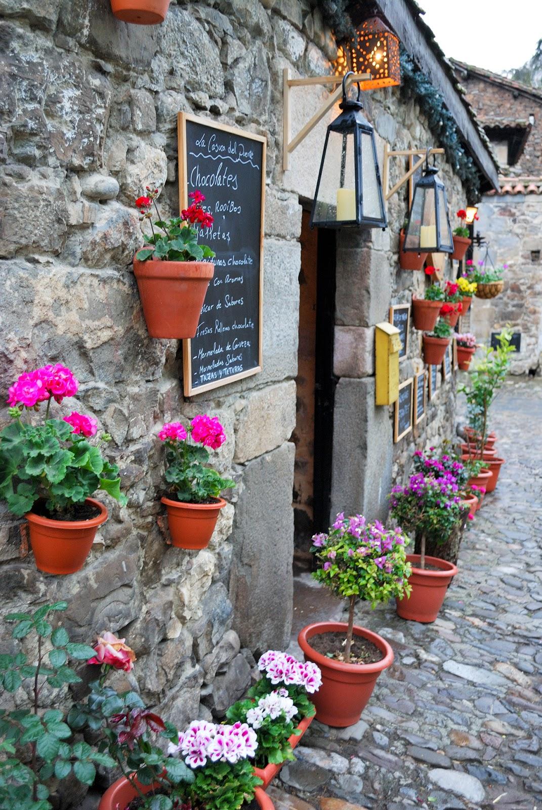 potes cantabria flores